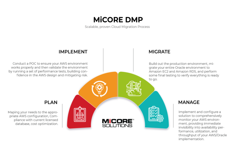 Micore-dmp-infographic